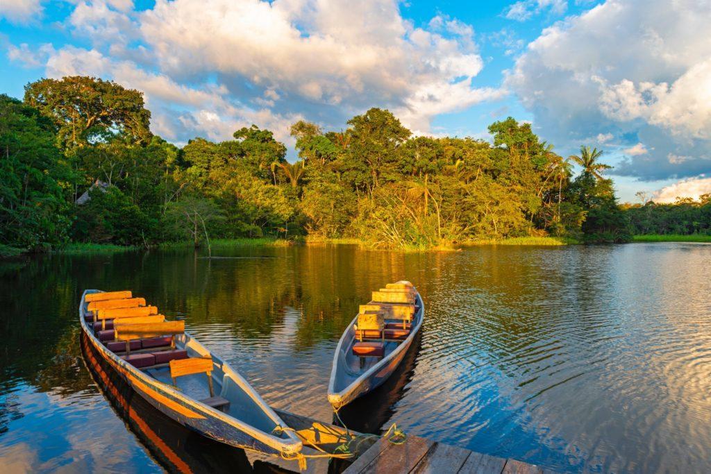 Amazônia – 2021