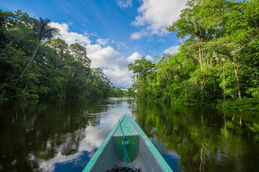 Amazônia – 2022